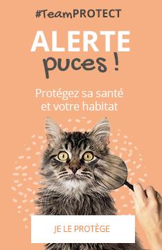 #TeamPROTECT : protégez sa santé et votre habitat