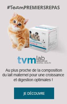 #TeamPREMIERSPAS : Découvrez le lait maternisé Optima de TVM pour une croissance optimale