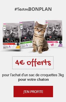 #TeamBONPLAN : 4€ offerts pour votre chaton