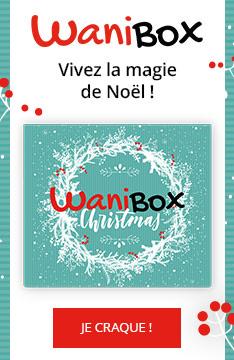 Decouvrez la WaniBox Christmas