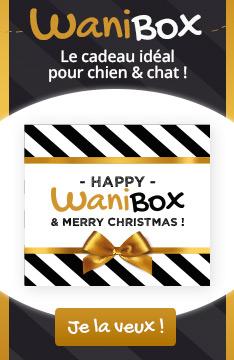 Découvrez nos Wanibox spéciale Noël