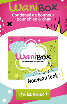 Découvrez la Wanibox pour une rentrée vitaminée