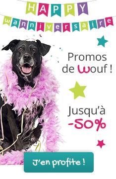 Happy Wanniversaire : promos jusqu'à -50% !