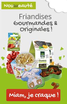 Friandises : faites le plein de nouveautés orginiales et gourmandes