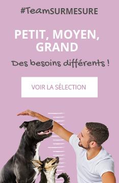 Votre chien est unique, découvrez la sélection adapté à ses besoins