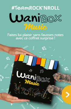 Wanibox music