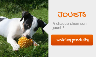 home chien mobile jouets