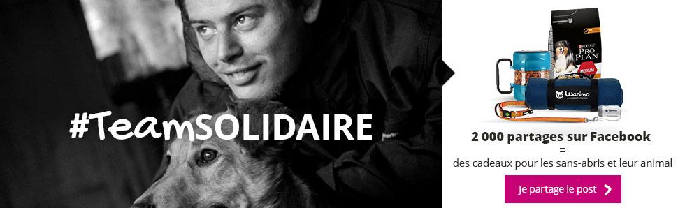 1 partage sur Facebook = des cadeaux pour les sans-abris et leur animal
