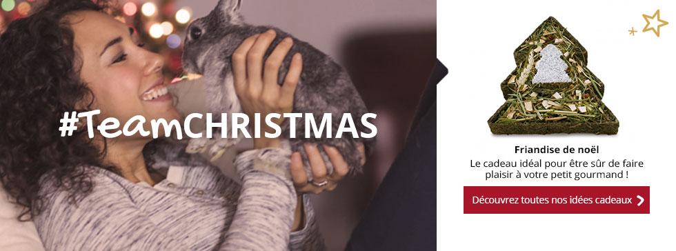 Découvrez toute notre sélection de Noël