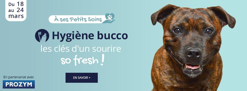 Hygiène bucco : les clés d'un sourire so fresh !