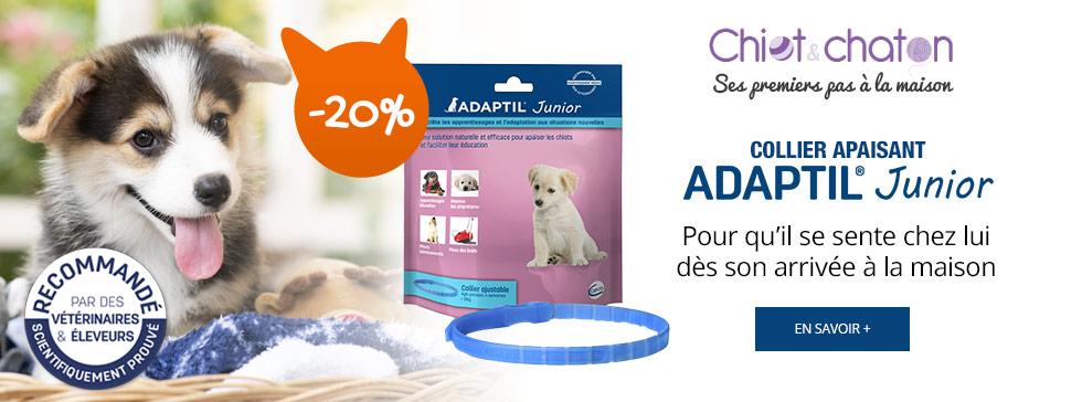 Chiot & chaton : collier apaisant ADAPTIL® Junior pour chiot