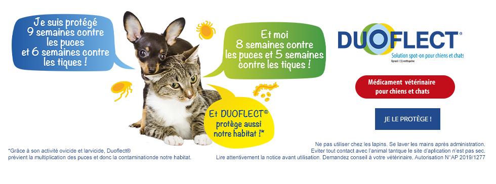 Duoflect Spot-On pour chiens et chats