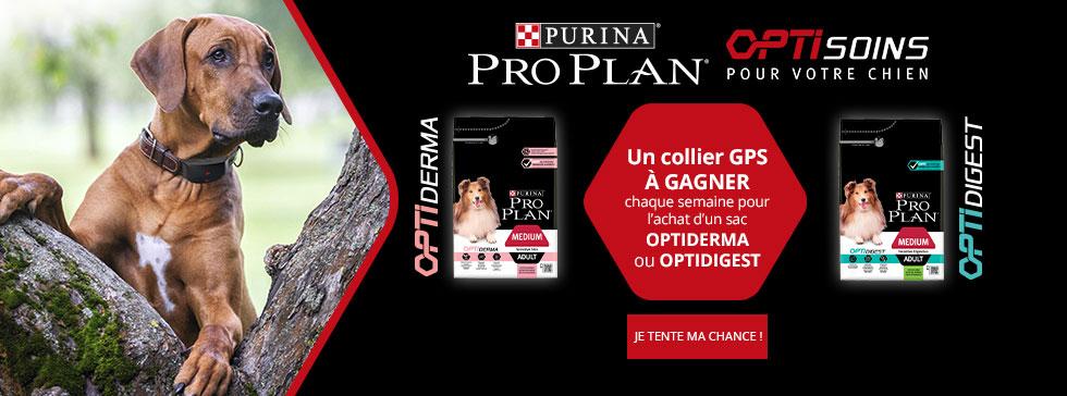 Proplan Optisoins : Un collier GPS à gagner chaque semaine pour l'achat d'un sac Optiderma ou Optidigest