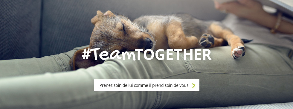 #TeamTOGETHER : prenez soin de lui comme il prend soin de vous
