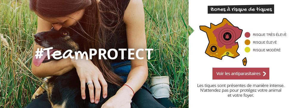 #TeamPROTECT : voir les antiparasitaires pour le protéger