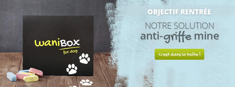 Découvrez la WaniBox chien du mois de mai !