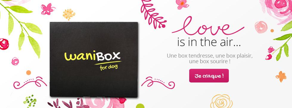 Découvrez la wanibox chien autour du thème de l'amour