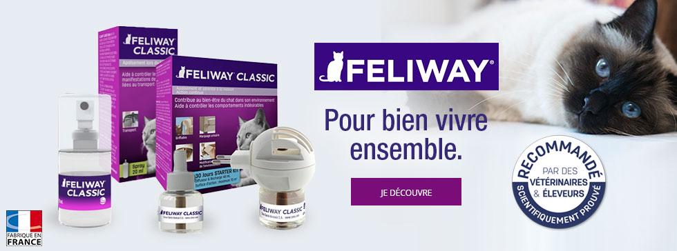 Feliway, la solution bien-être de votre chat