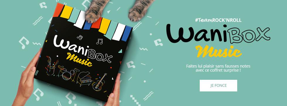 wanibox music
