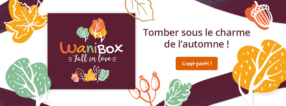 Retrouvez la wanibox Fall in love
