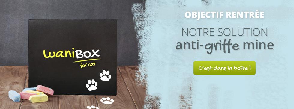Découvrez la WaniBox de la rentrée pour votre chat !