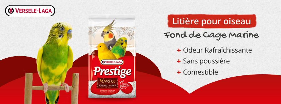 Boutique oiseaux nourriture cages mangeoires wanimo for Le jardin imperial marines de cogolin