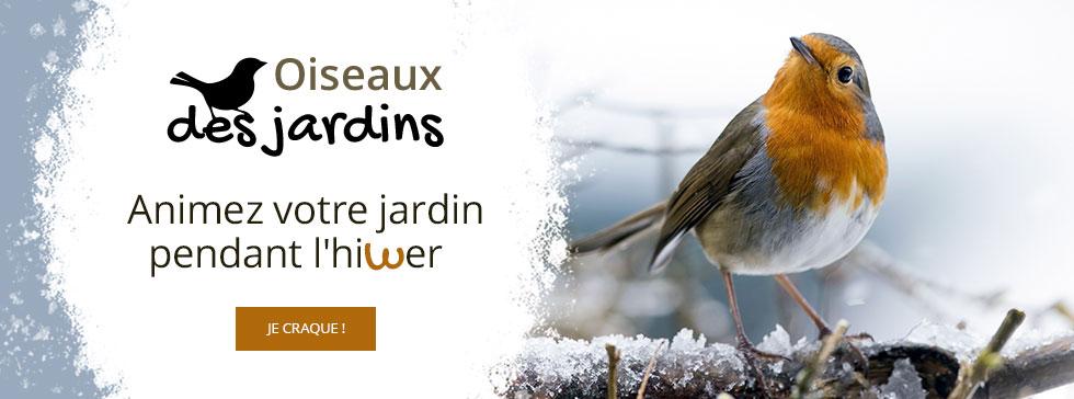 C'est l'hiver, n'oubliez pas les oiseaux des jardins