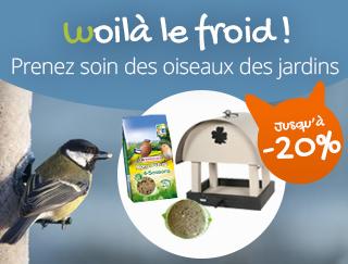 découvrez notre offre des oiseaux des jardins