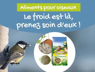 Aliments Aidez les oiseaux des jardins !