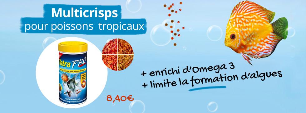 Découvrez les multicripfs pour vos poissons tropicaux