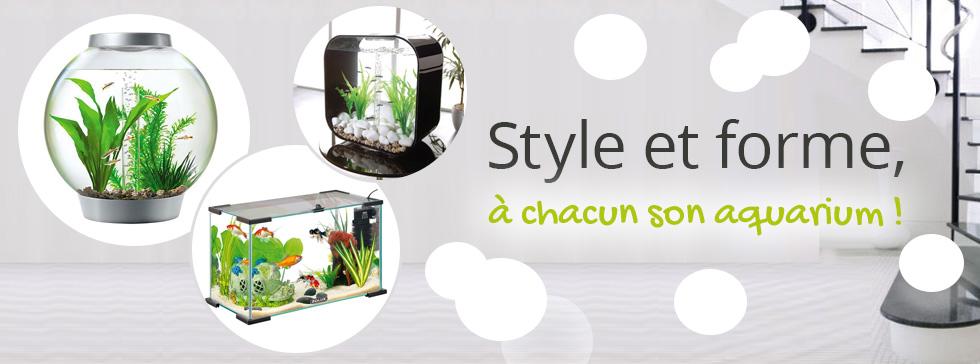 découvrez notre offre d'aquarium !