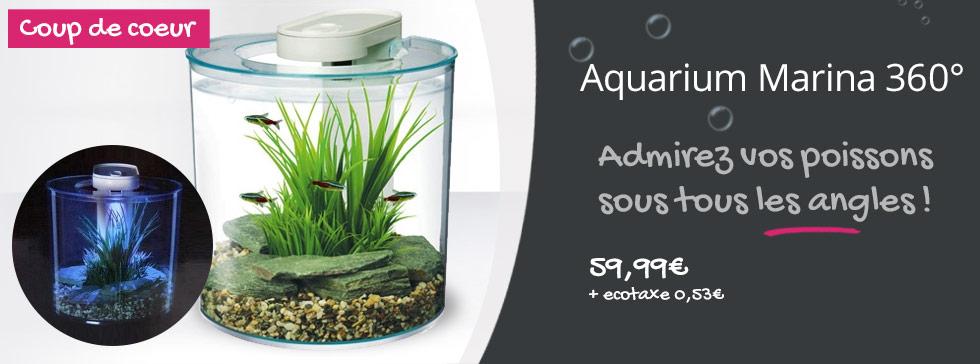 decouvrez l'aquarium marina 360°
