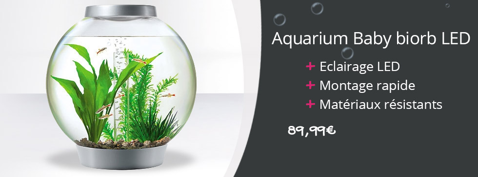 Un aquarium Baby Biorb LED au design innovant !