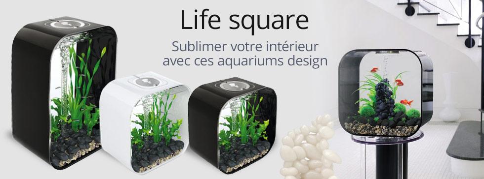 Gamme d'aquariums life square, design et elegance