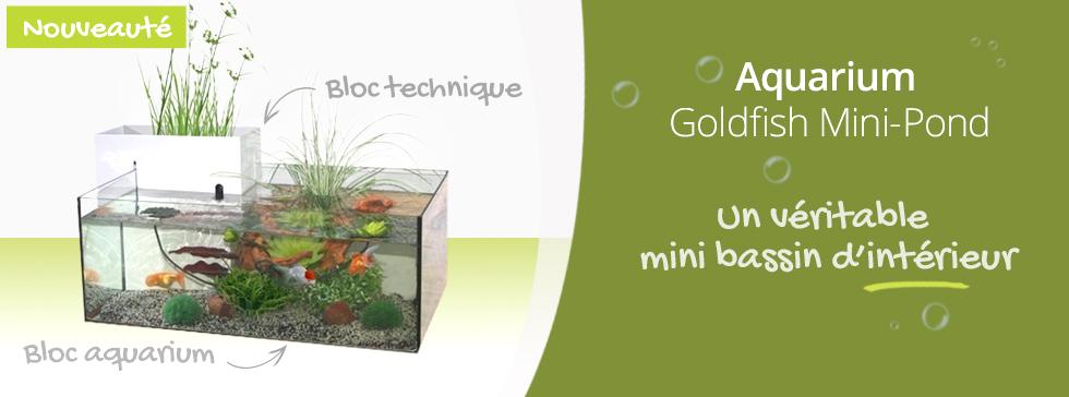 Nouveau Auarium Goldfish Marina