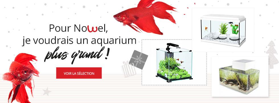 Découvrez notre sélection d'aquariums