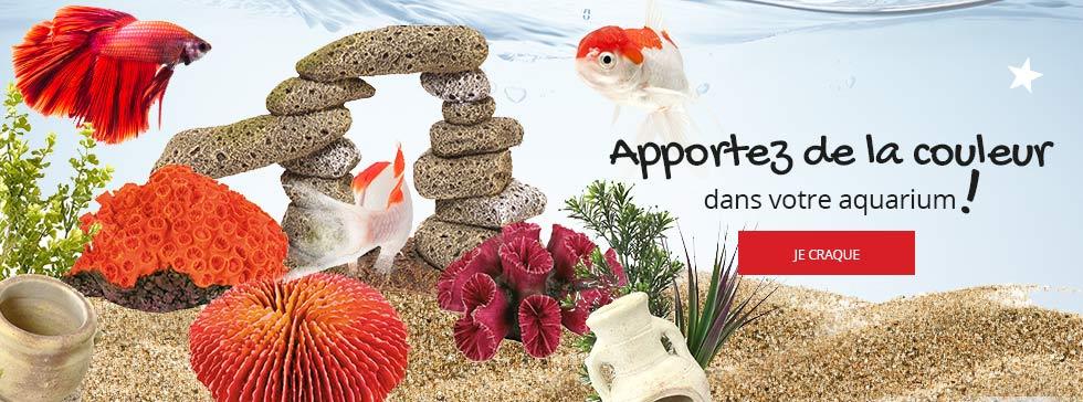 Apportez de la couleur dans votre aquarium avec notre sélection de décorations !