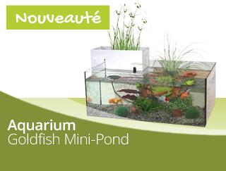 Nouveau Aquarium Goldfish Marina