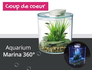 Découvrez l'aquarium Marina 360°