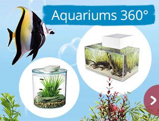 Découvrez nos aquariums 360°