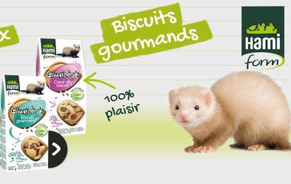 Croquettes et biscuits pour furets