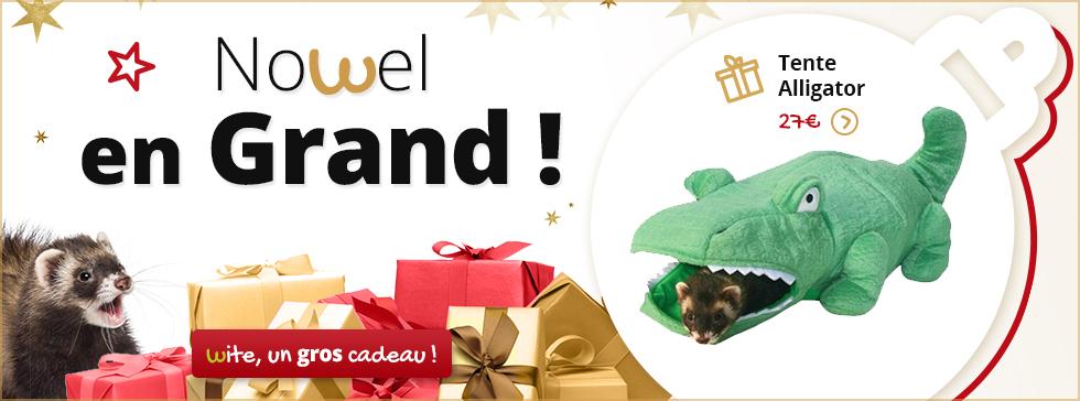 Gâter votre furet à Noël !