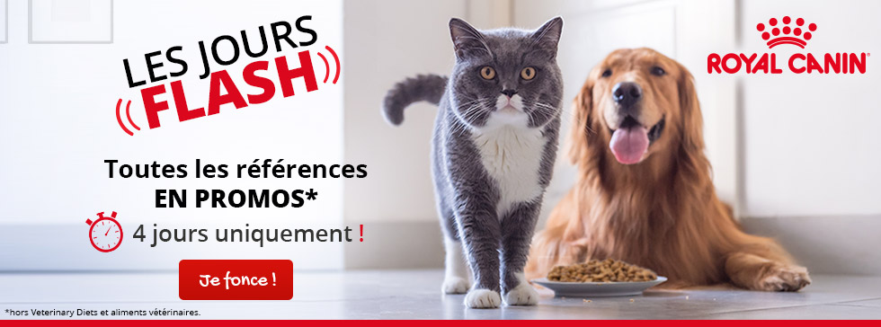 Vente flash sur Royal Canin !