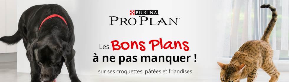 ProPlan : les bons plans à ne pas manquer !