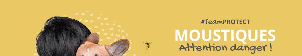 Moustiques : Attention danger !