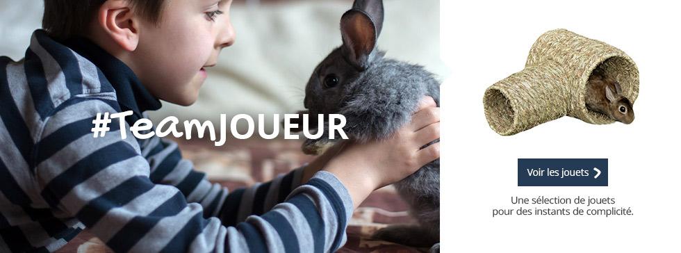 #TeamJOUEUR : partagez des moments de complicité autour du jeu avec votre rongeur !