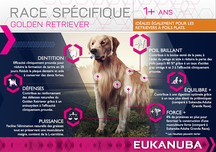 EUKANUBA Breed Nutrition - Croquettes pour chien - Golden