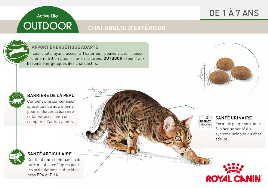 Royal canin croquettes pour chat outdoor wanimo - Croquettes royal canin club cc sac de 20kg ...