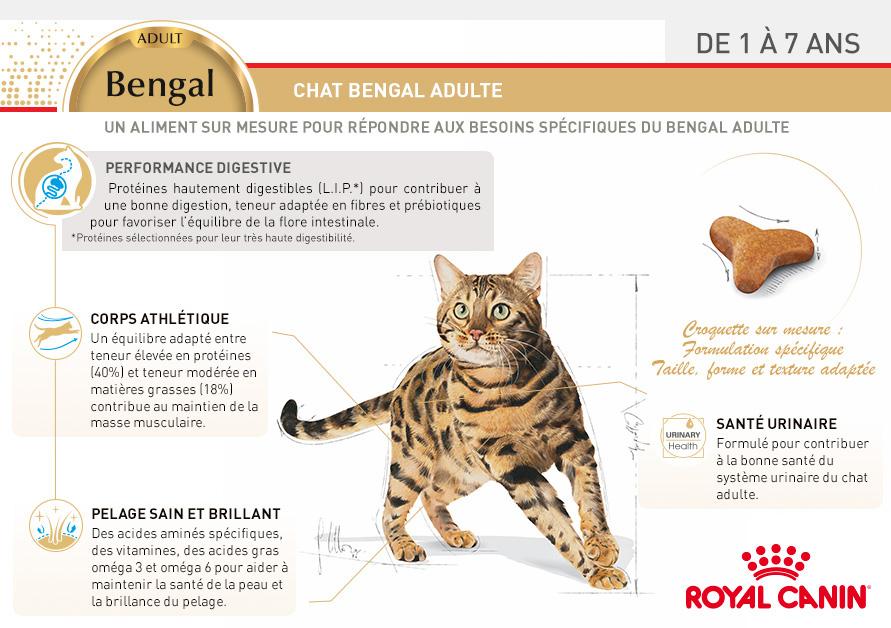 Royal canin breed nutrition croquettes pour chat - Chat du bengal gratuit ...