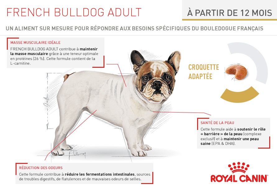 royal canin breed nutrition croquettes pour chien